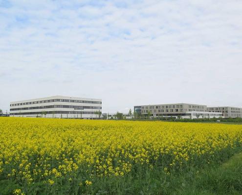 Gesundheitscampus Bad Homburg Büro Schümann Sunder-Plassmann und Partner